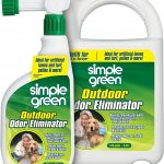 Best Artificial Grass Cleaner for Pets